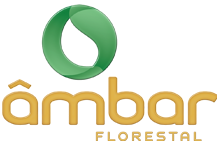 Ambar Florestal